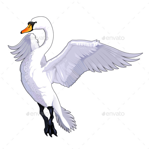 GraphicRiver Flying Swan 9274681