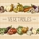 Vegetables Seamless Pattern Border - GraphicRiver Item for Sale