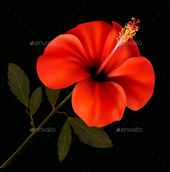GraphicRiver Red Flower 9276807