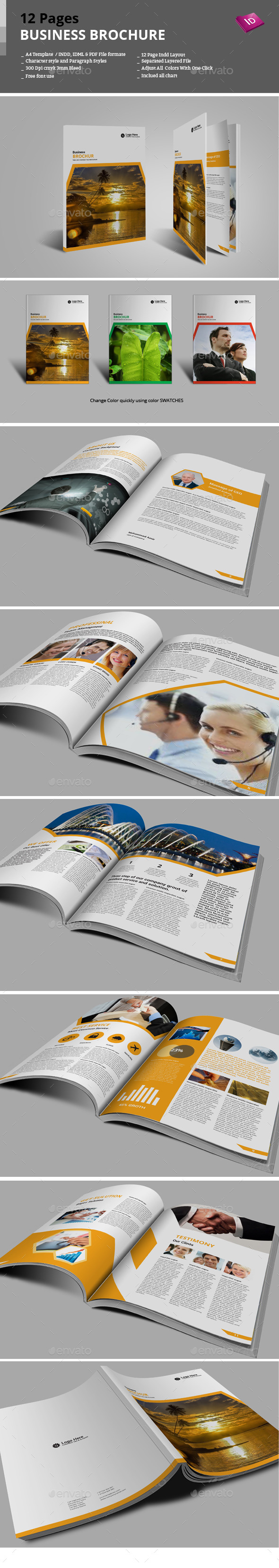GraphicRiver 12 Pages Business Brochure 9276838