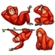 Orangutan - GraphicRiver Item for Sale