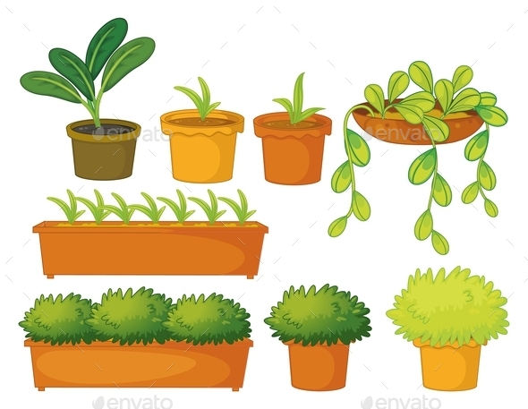 GraphicRiver Various Plants and Pots 9277629