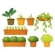 Various Plants and Pots - GraphicRiver Item for Sale