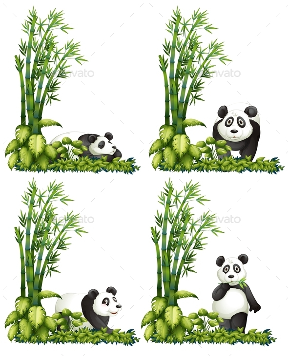 GraphicRiver Panda and Bamboo 9278192
