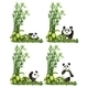Panda and Bamboo - GraphicRiver Item for Sale