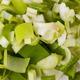 Diced fresh leeks - PhotoDune Item for Sale