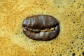 A coffee bean on coffee bubble - PhotoDune Item for Sale