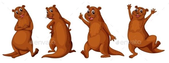 GraphicRiver Otter 9279604