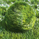 Bouncy Grass Ball Logo Reveal - VideoHive Item for Sale