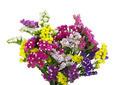 beautiful flowers - PhotoDune Item for Sale