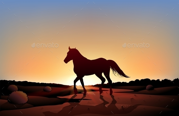 Horse in a Sunset Scenery at the Desert