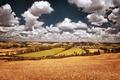Beautiful autumn landscape - PhotoDune Item for Sale