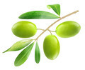 Green olives - PhotoDune Item for Sale