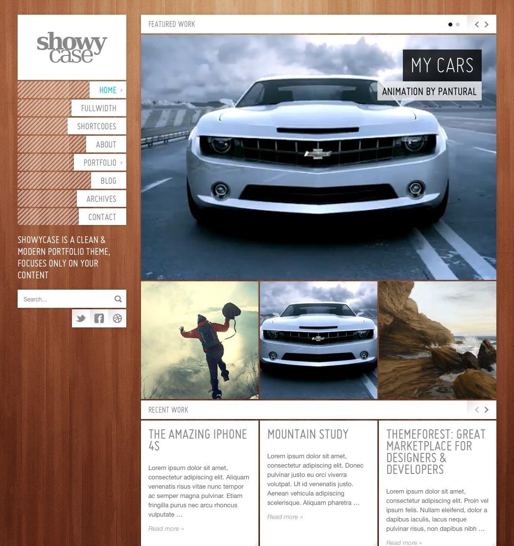 ShowyCase - Portfolio / Photography WP Theme