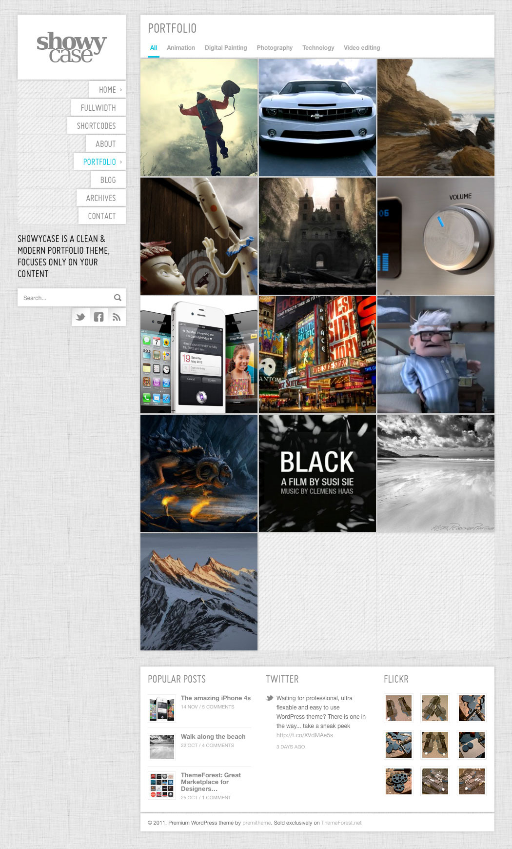 ShowyCase - Portfolio / Photography WP Theme
