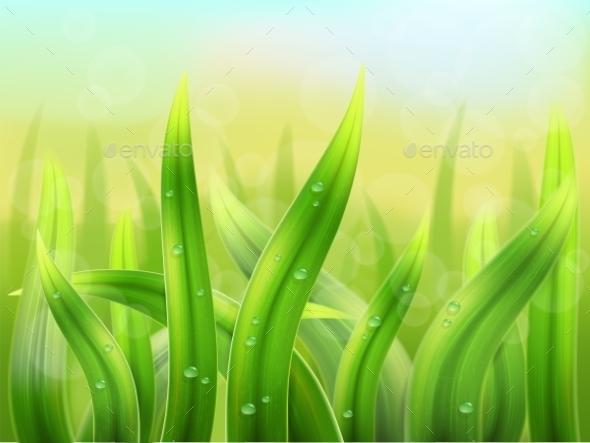 GraphicRiver Grass Background 9301434