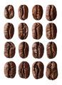 Coffee beans - PhotoDune Item for Sale