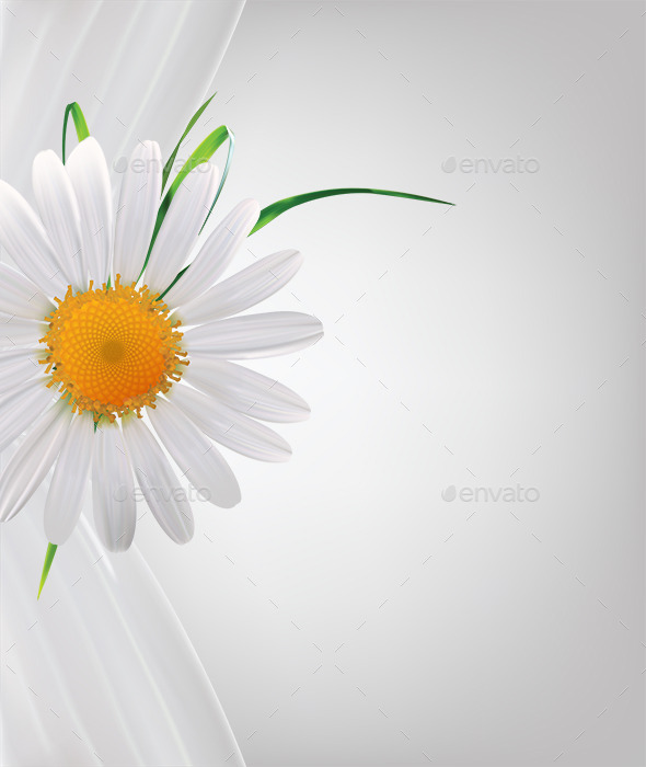 GraphicRiver Daisy Background 9304154