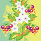 Abstract Flowers and Berries with Background  - GraphicRiver Item for Sale