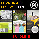 Multi Purpose Corporate Flyer Bundle - GraphicRiver Item for Sale