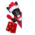 santa dog - PhotoDune Item for Sale