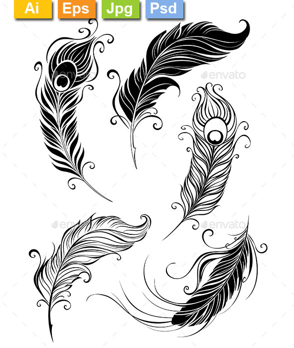 GraphicRiver Set of Feathers 9318613