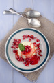 panna cotta with pomegranate seed - PhotoDune Item for Sale