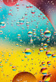 oil bubbles in water, rainbow colors - PhotoDune Item for Sale