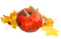 Red ripe pumpkin and autumn yellowed leaves - PhotoDune Item for Sale