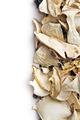 dried mushrooms - PhotoDune Item for Sale