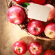 Red apples with a tag in a basket - PhotoDune Item for Sale