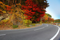 Highway with colorful maple leaves - PhotoDune Item for Sale