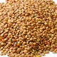 Pile of dried brown lentils - PhotoDune Item for Sale