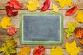 blank slate blackboard  with leaves - PhotoDune Item for Sale