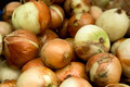 Organic Onions - PhotoDune Item for Sale