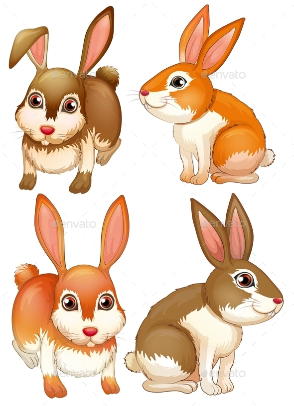 GraphicRiver Rabbits 9335718