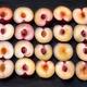 Twenty purple plums cut in halves - PhotoDune Item for Sale