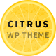Citrus - Creative One Page Multi-Purpose Theme
