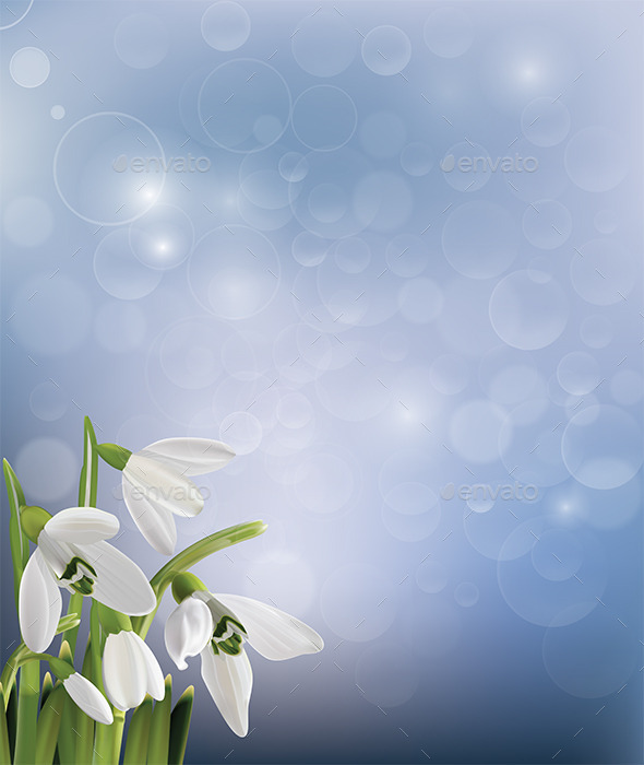 GraphicRiver Spring Snowdrop Flowers on Blue Background 9336919