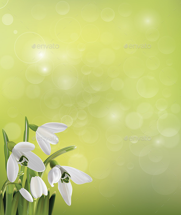 GraphicRiver Spring Snowdrop Flowers on Green Background 9336998