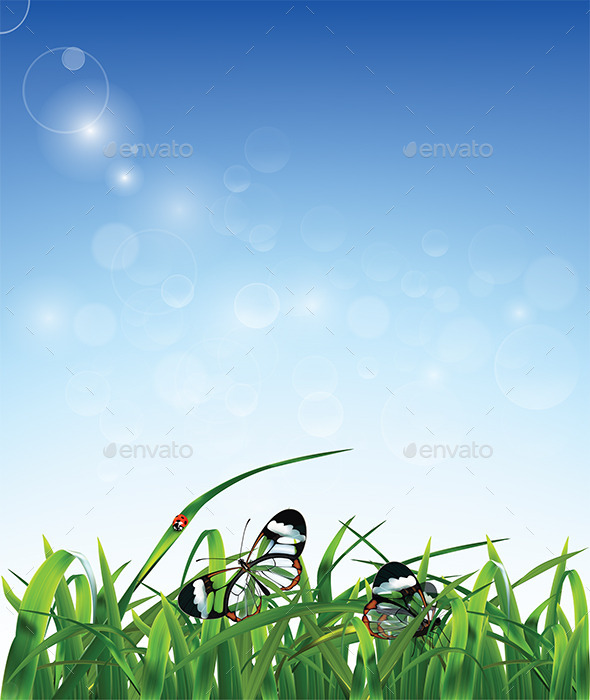 GraphicRiver Grass Butterfly and Ladybug 9338326