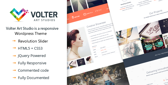 ThemeForest Volter Responsive One Page WordPress Theme 9273496