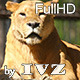Lioness - VideoHive Item for Sale