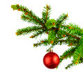 Decorative ball on fir branch - PhotoDune Item for Sale