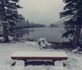 Winter bench - PhotoDune Item for Sale