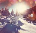 Winter - PhotoDune Item for Sale
