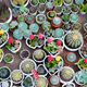many cacti in pots - PhotoDune Item for Sale