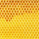 natural honey in honeycomb background - PhotoDune Item for Sale