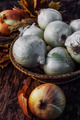 vegetable onion on wooden background - PhotoDune Item for Sale