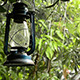 Tropical Rain - VideoHive Item for Sale